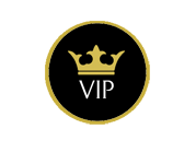 VIP airport services